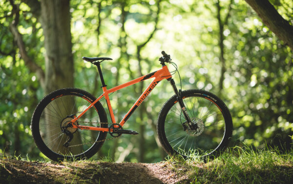 Saracen mantra trail in the woods